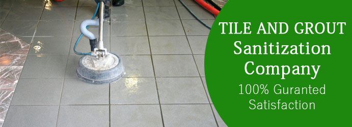 Tile Sanitization Newport