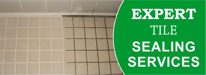 Expert Tile Sealing Services Newport